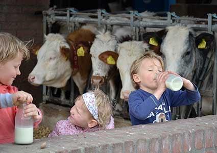 Goedemorgen! 🐄Morgen is het #Wereldmelkdag. Mooi moment om deze week te starten met de melktapchallenge! Ga naar de melk...