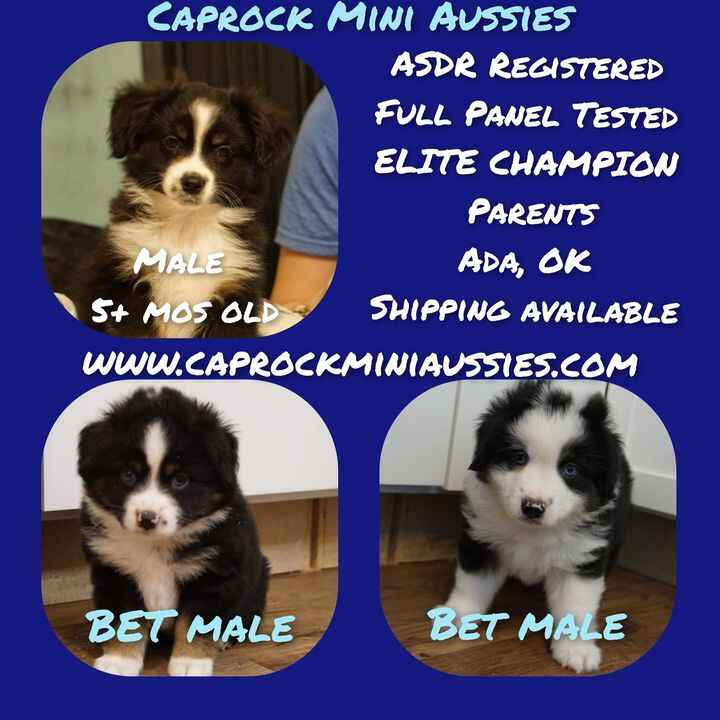 Prices REDUCED to get them homes!! Pm for more info!