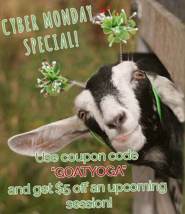 """It's Cyber Monday! Use coupon code """"GOATYOGA"""" and get $5 off a ticket to any upcoming event! Don't see an event coming u..."""