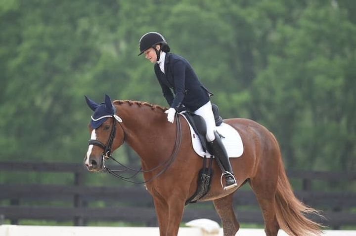 Fabulous lease opportunity.  Lola (L'Amour Fou) is a 7 year old (L'Espoir (Lord Loxley) x Deniro) 17.1 hand mare.  She h...
