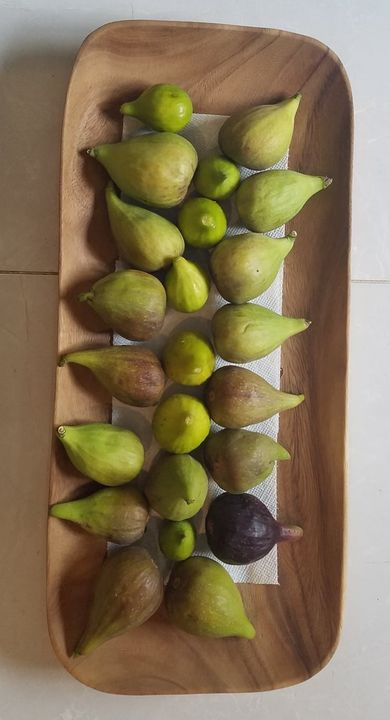 """FIGS Season has arrived on the farm, a yummy site to see.$9.99 per pound please place your """"curbside"""" pick up order.Emai..."""