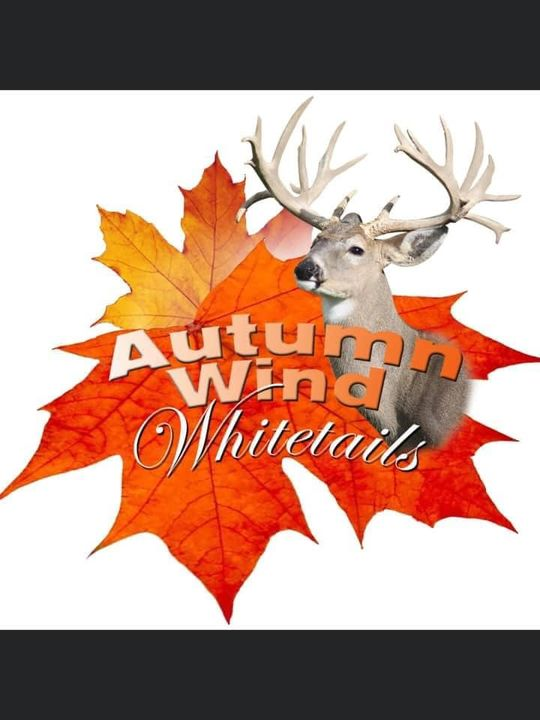 Indiana's top deer farm, Autumn Wind Whitetails. Purchase biggest deer today !