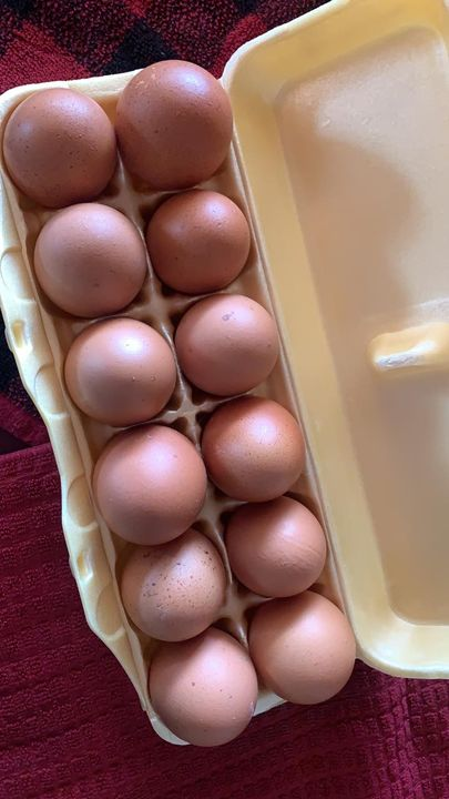 Do you need eggs? We've got them! Farm fresh at $3.50/dozen! We've got several dozen ready to go! Give us a call or stop...